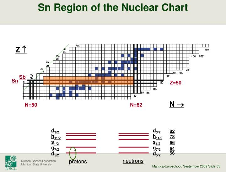 Sn Region of the Nuclear Chart