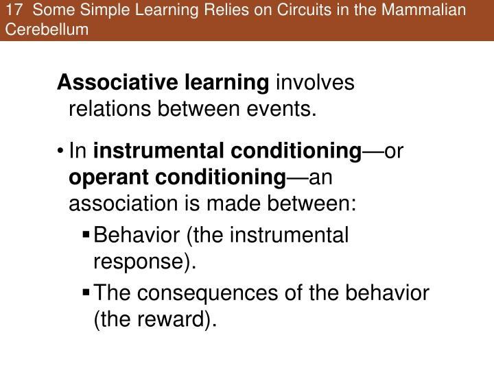 17  Some Simple Learning Relies on Circuits in the Mammalian Cerebellum