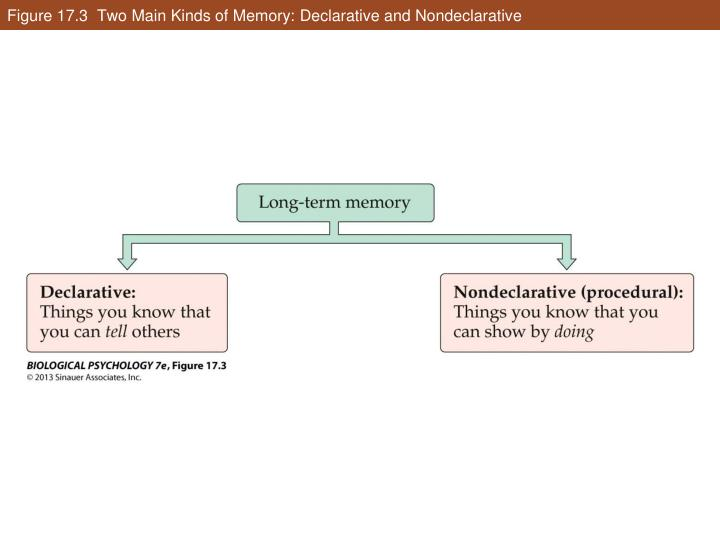 Figure 17.3  Two Main Kinds of Memory: Declarative and Nondeclarative