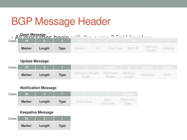 BGP Message Header