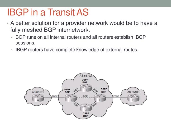IBGP in a Transit AS