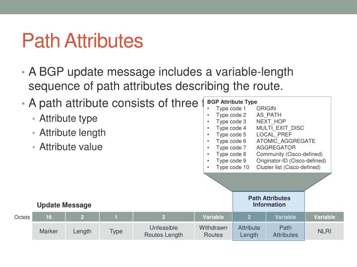 Path Attributes