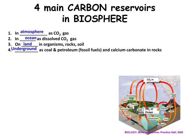 4 main CARBON reservoirs
