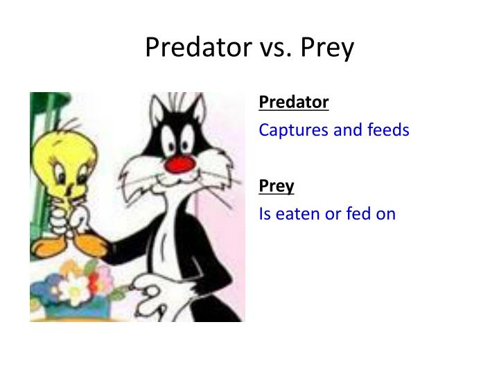 Predator vs. Prey
