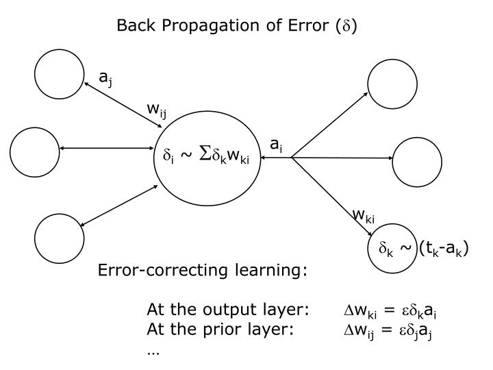 Back Propagation of Error (