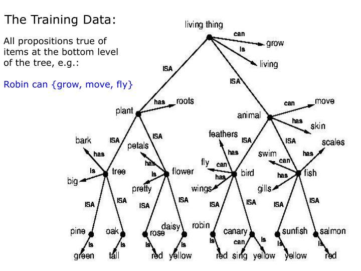 The Training Data: