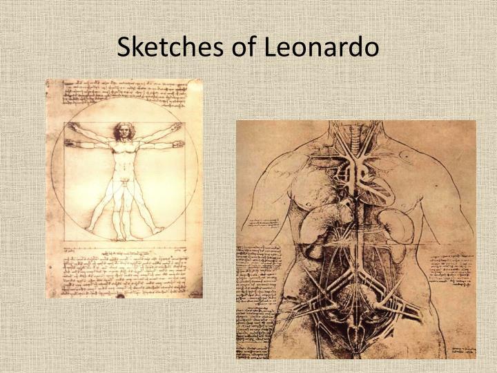 Sketches of Leonardo