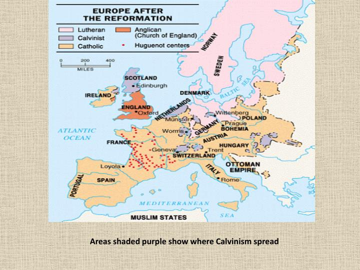 Areas shaded purple show where Calvinism spread