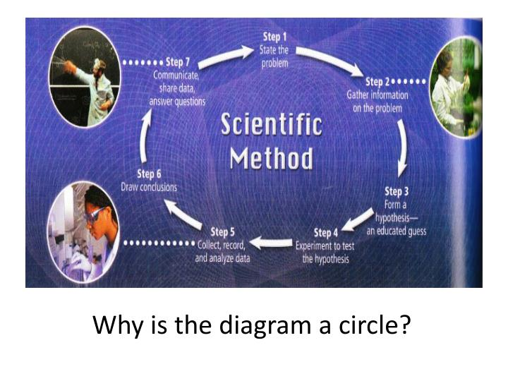 Why is the diagram a circle?