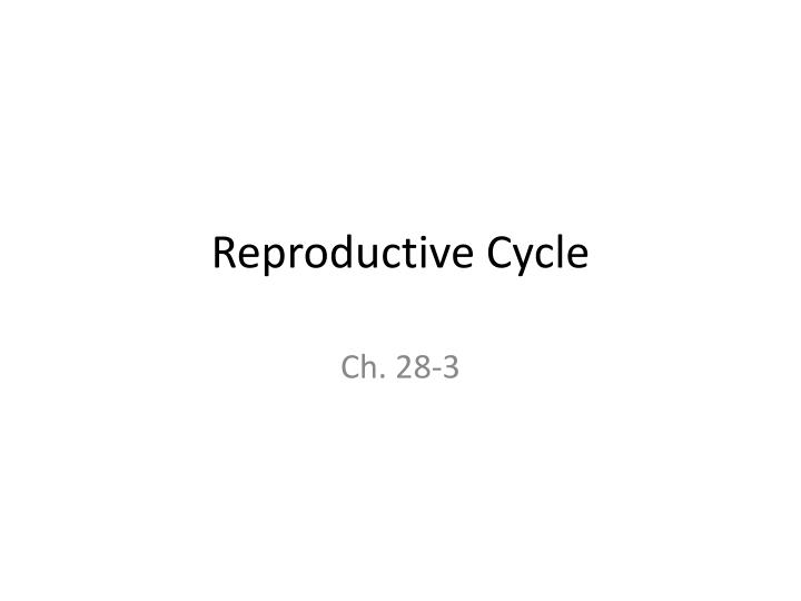 Reproductive Cycle