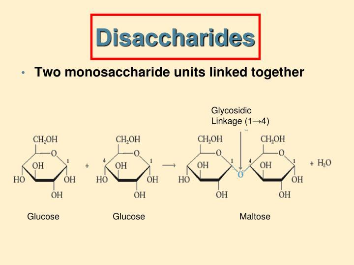 Disaccharides