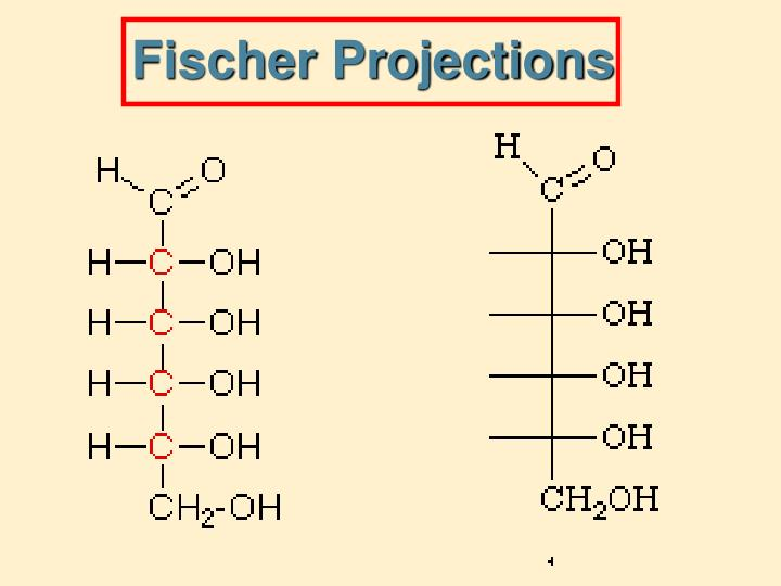 Fischer Projections