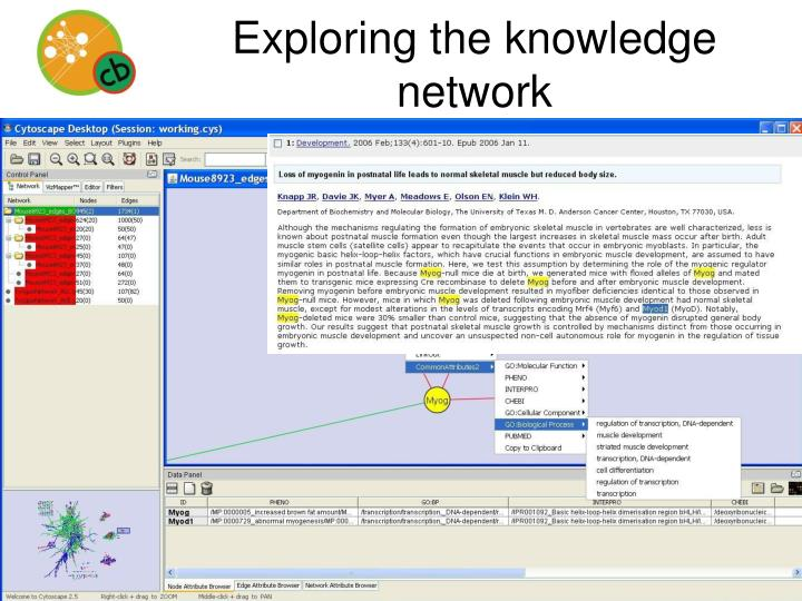 Exploring the knowledge network