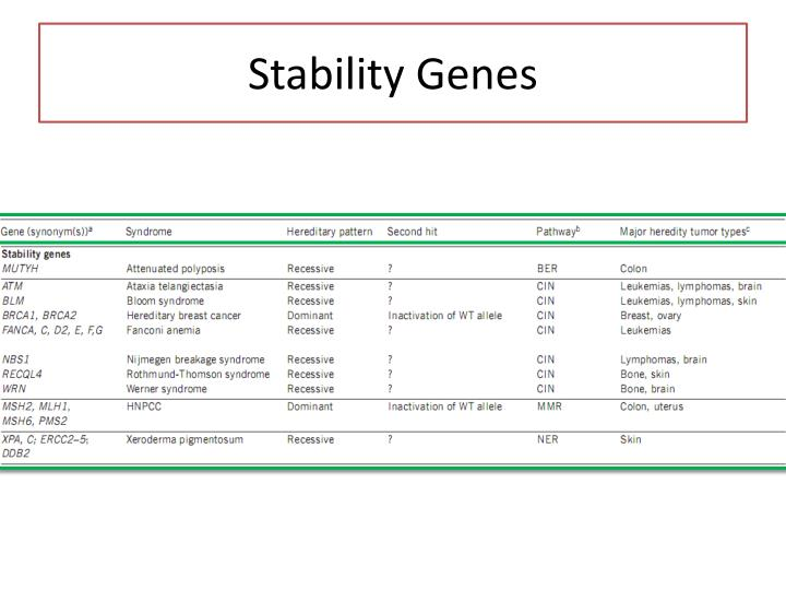 Stability Genes