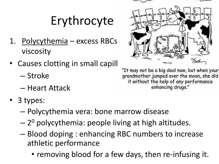 Erythrocyte Disorders