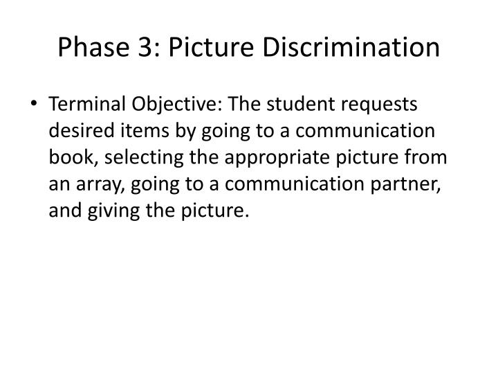 Phase 3: Picture Discrimination
