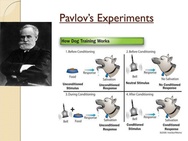 Pavlov's Experiments