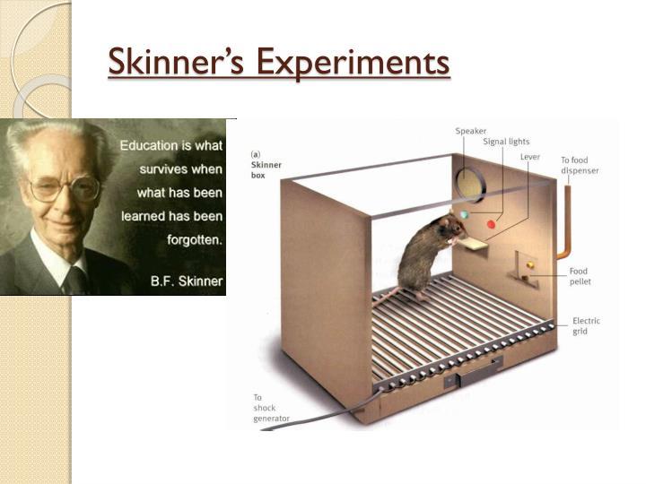 Skinner's Experiments