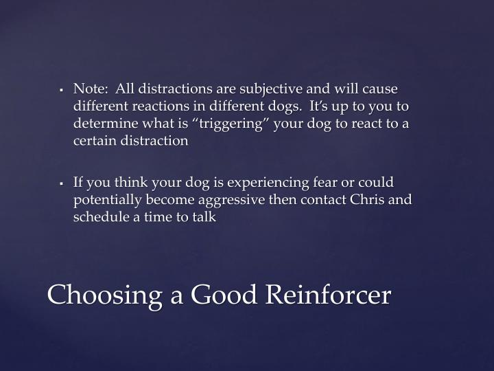"Note:  All distractions are subjective and will cause different reactions in different dogs.  It's up to you to determine what is ""triggering"" your dog to react to a certain distraction"