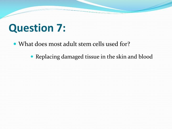 Question 7: