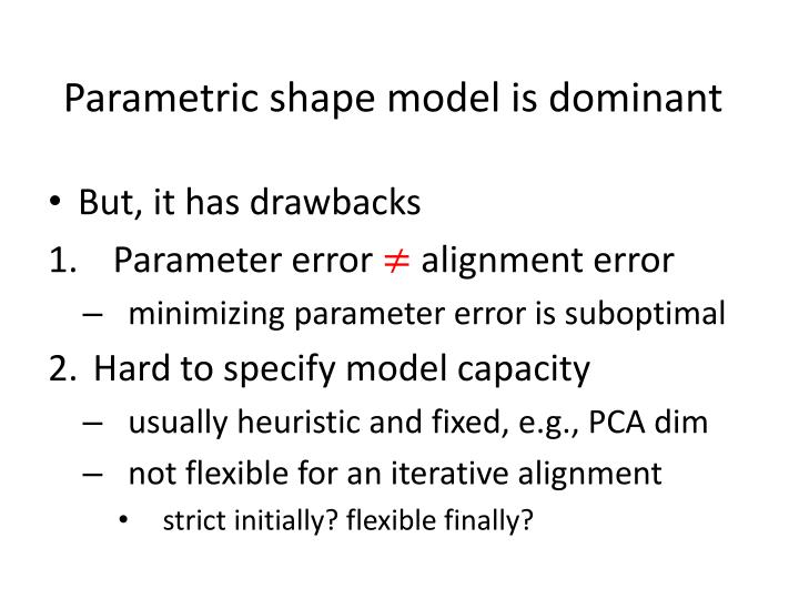 Parametric shape model is dominant