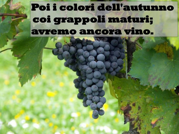 Poi i colori dell'autunno coi grappoli maturi;