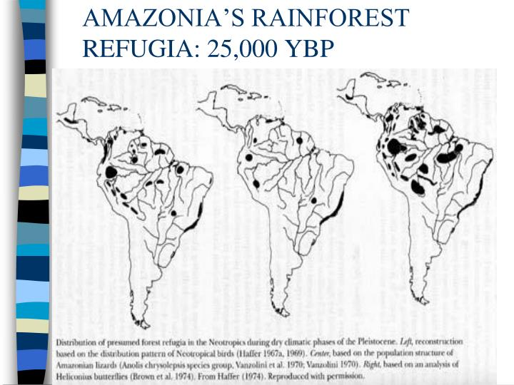 AMAZONIA'S RAINFOREST REFUGIA: 25,000 YBP