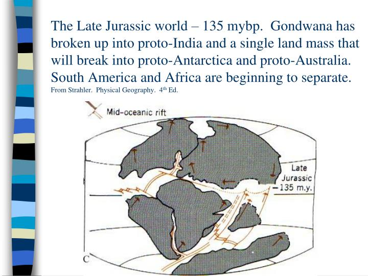 The Late Jurassic world – 135 mybp.  Gondwana has broken up into proto-India and a single land mass that will break into proto-Antarctica and proto-Australia.  South America and Africa are beginning to separate.