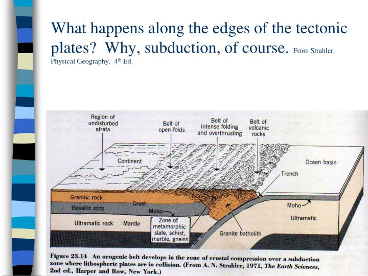 What happens along the edges of the tectonic plates?  Why, subduction, of course.