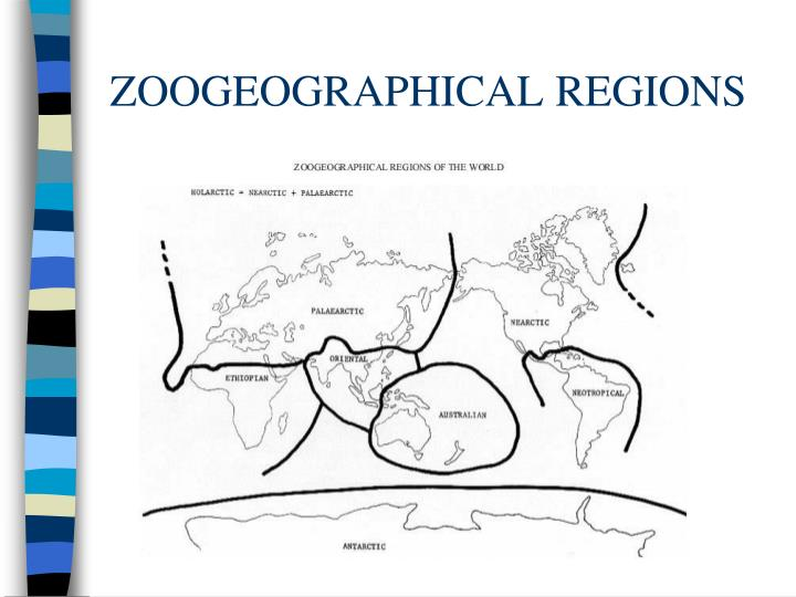 ZOOGEOGRAPHICAL REGIONS