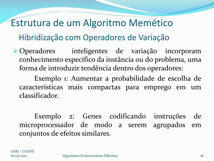 Estrutura de um Algoritmo Memético