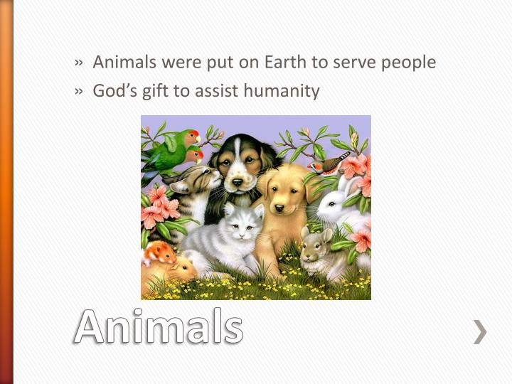 Animals were put on Earth to serve people