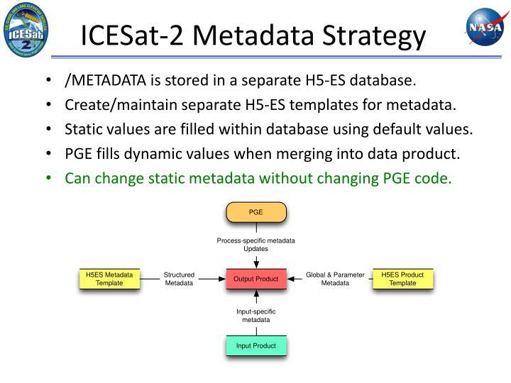 ICESat-2 Metadata Strategy
