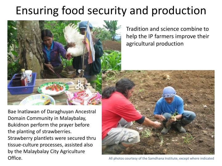 Ensuring food security and production