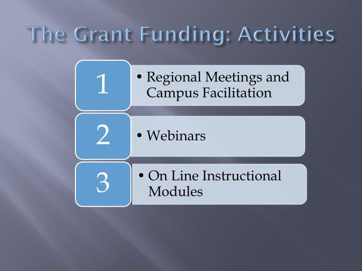 The Grant Funding: Activities
