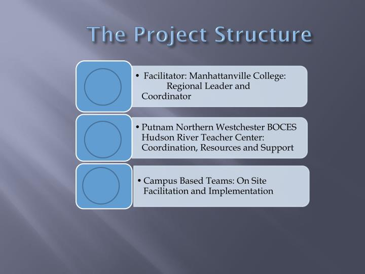 The Project Structure