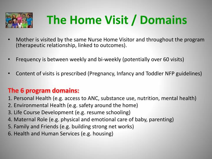 The Home Visit / Domains