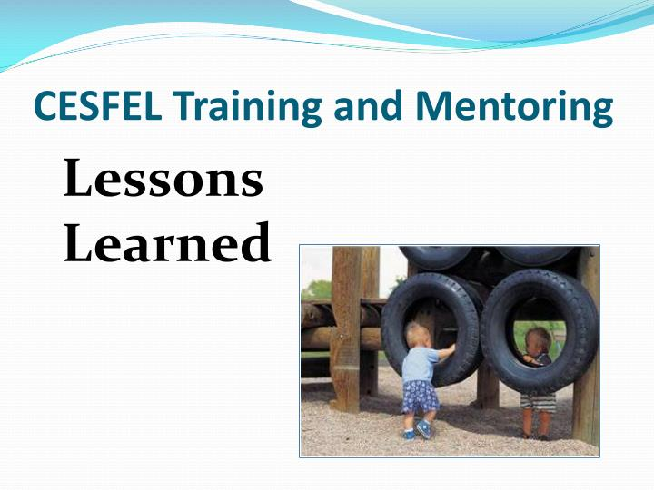 CESFEL Training and Mentoring