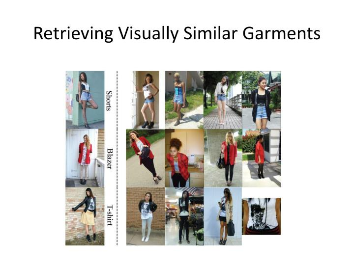 Retrieving Visually Similar Garments