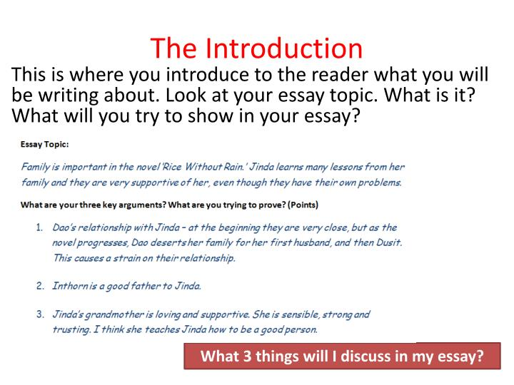 importance of family essay Normal functioning family is there any way to tell if my family is functioning normally many parents ask themselves this question, but there is no simple answer.