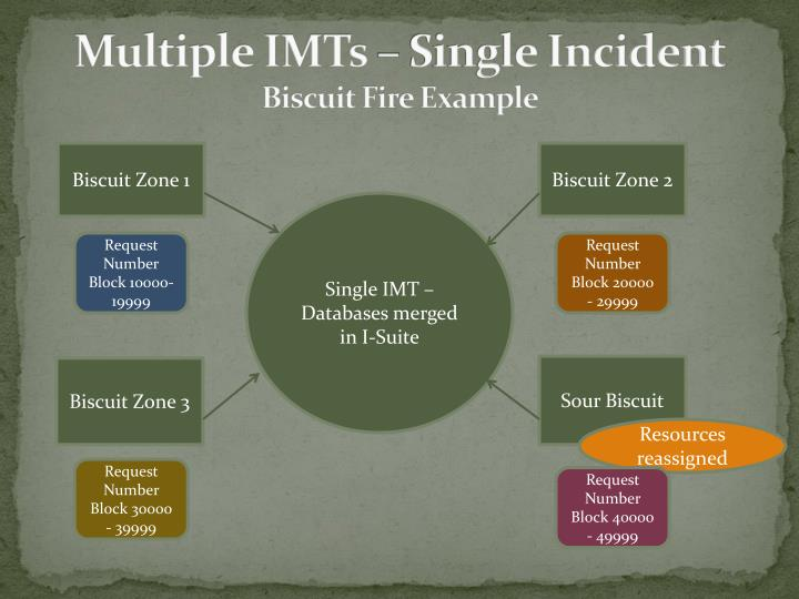 Multiple IMTs – Single Incident
