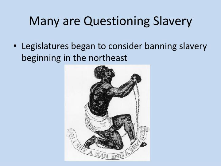 Many are Questioning Slavery