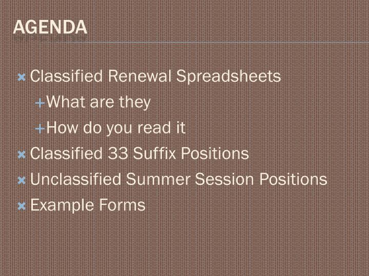 Classified Renewal Spreadsheets