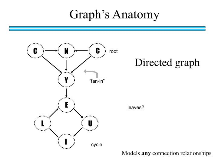 Graph's Anatomy