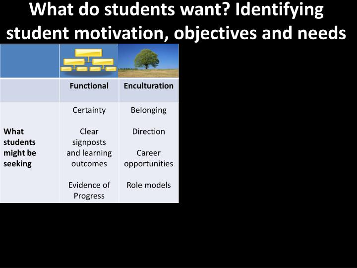 What do students want? Identifying student motivation, objectives and needs