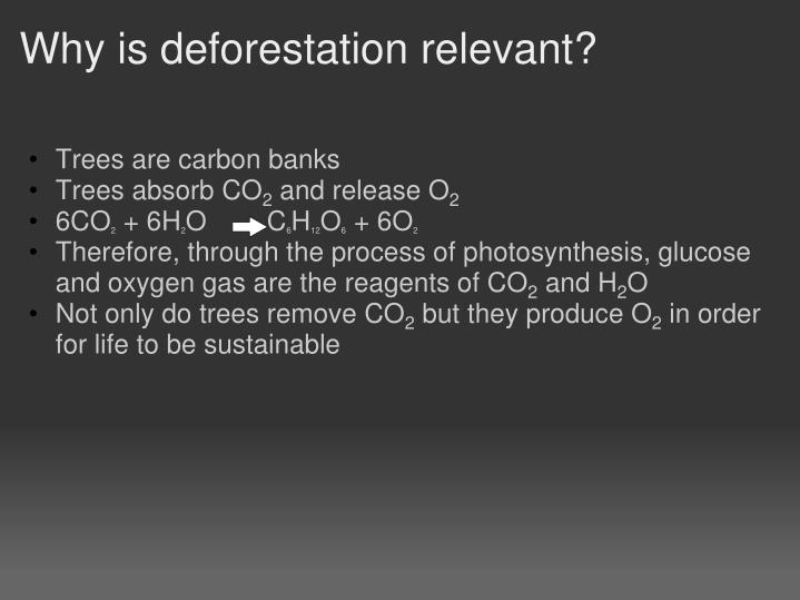 Why is deforestation relevant?