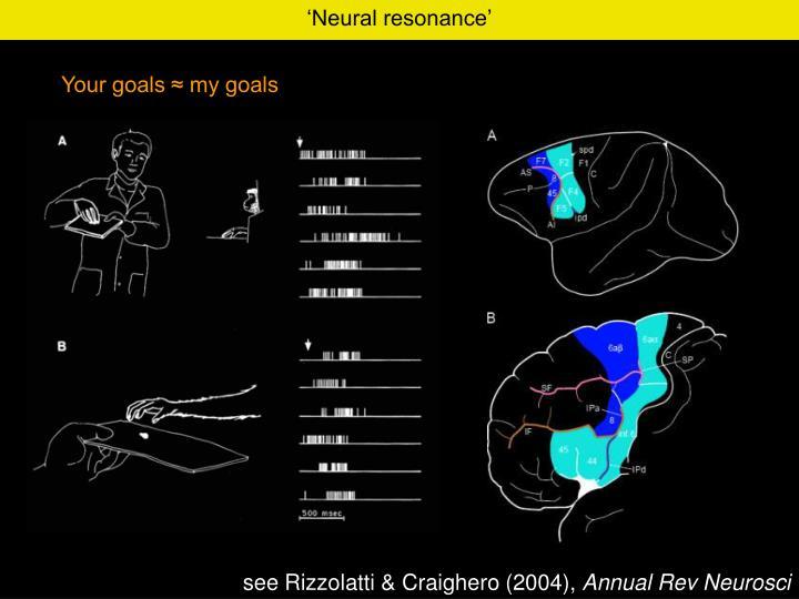 'Neural resonance'