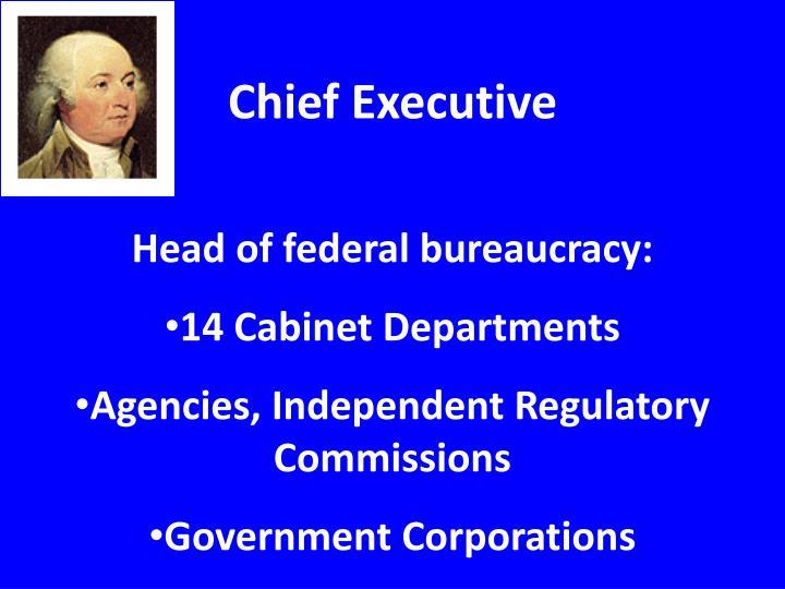 Chief Executive