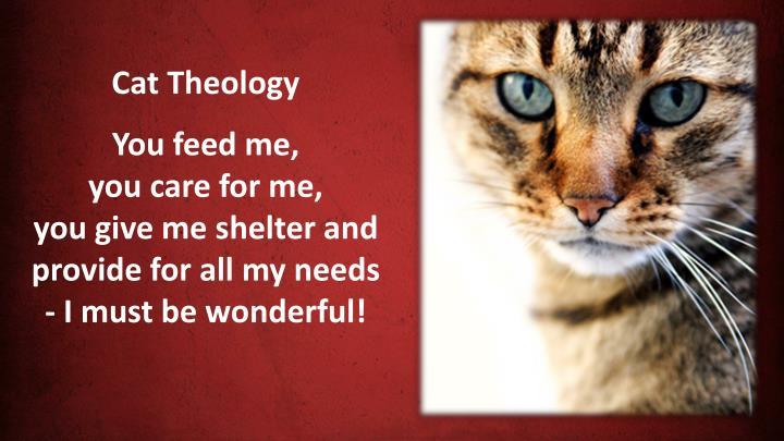 Cat Theology