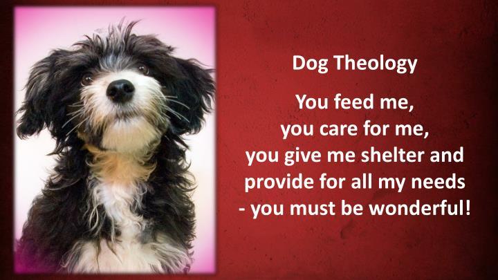 Dog Theology